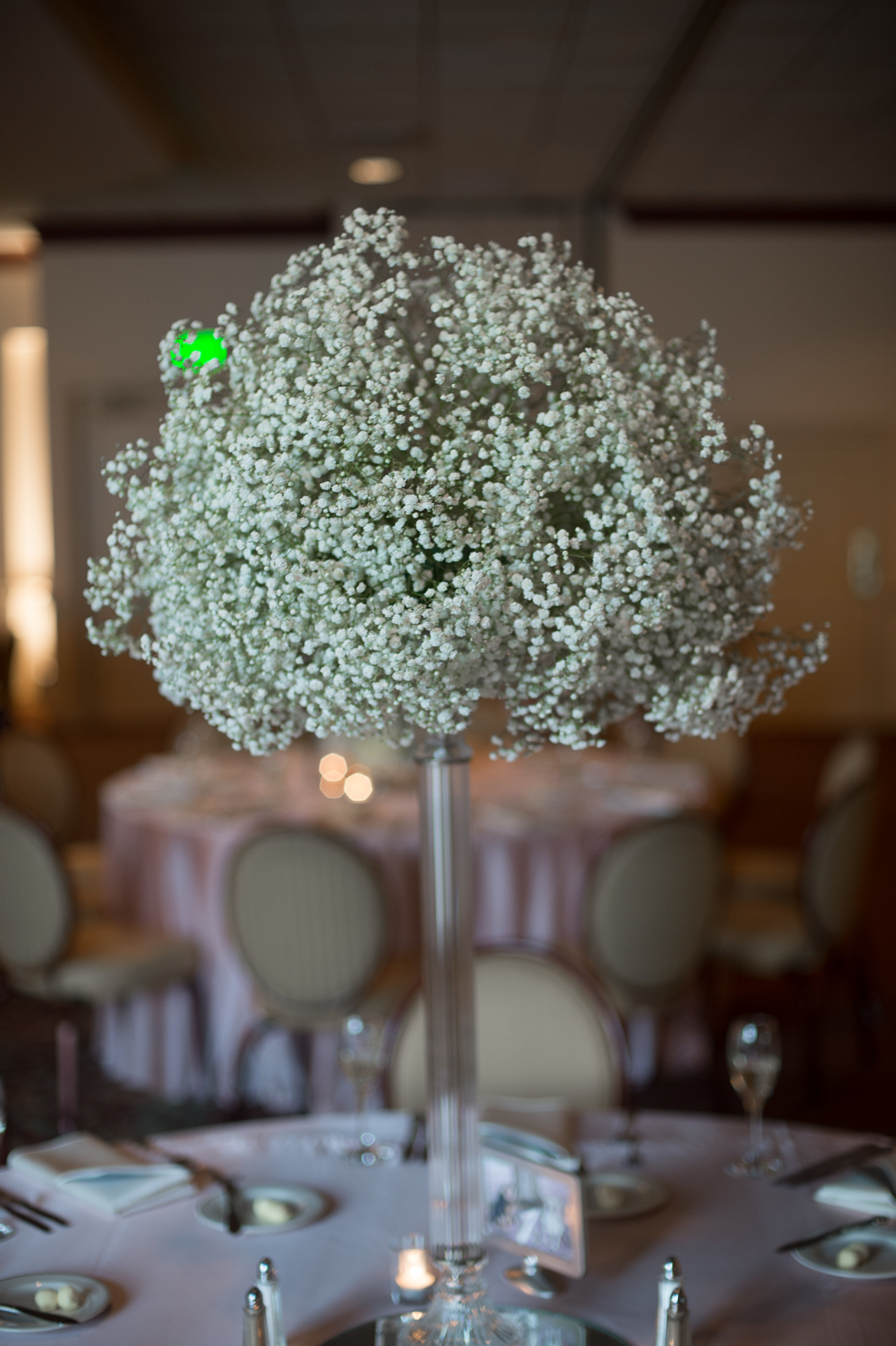 Baby S Breath Wedding The Floral Studio In Baltimore